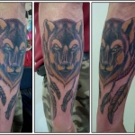 loup wolf couleur color neo traditonnel dermograph'ink, bodyperfect, chambery tatouage